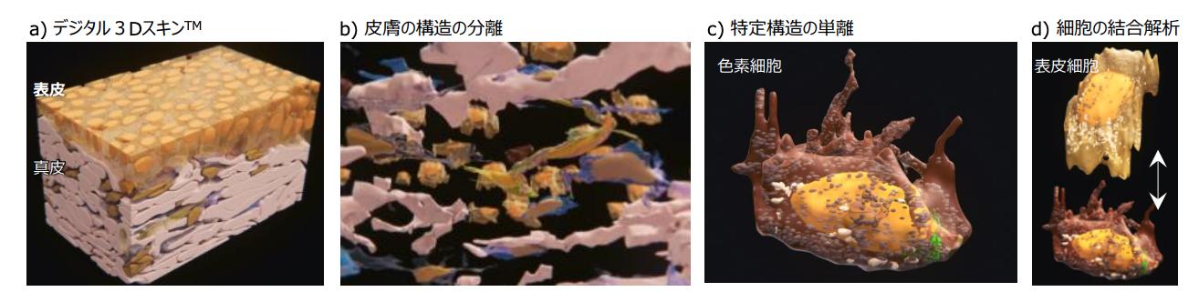 デジタル3Dスキン 資生堂