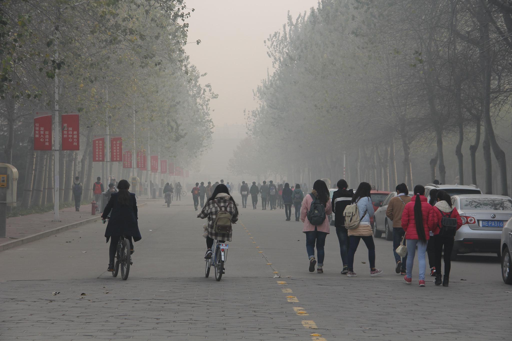 自動車業界を筆頭に、世界中で急激に進む大気汚染問題への対応