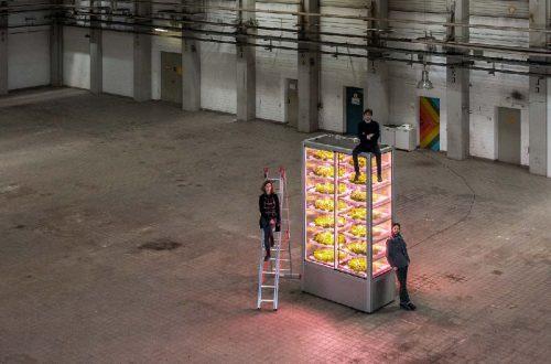 IoTと垂直農法でポップアップ農場を実現する、ベルリン発のミニ畑スタートアップ