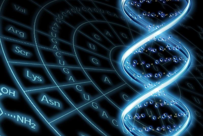 DNA版App Store「Helix」で利用できるDNAレベルのパーソナライズサービス10選