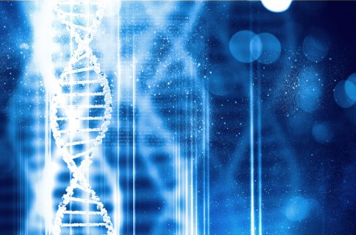 テクノロジーが個人や企業の「ヘルスケア」マインドを後押し。遺伝子分析によるカウンセリングを実現する「IDENSIL(イデンシル)」