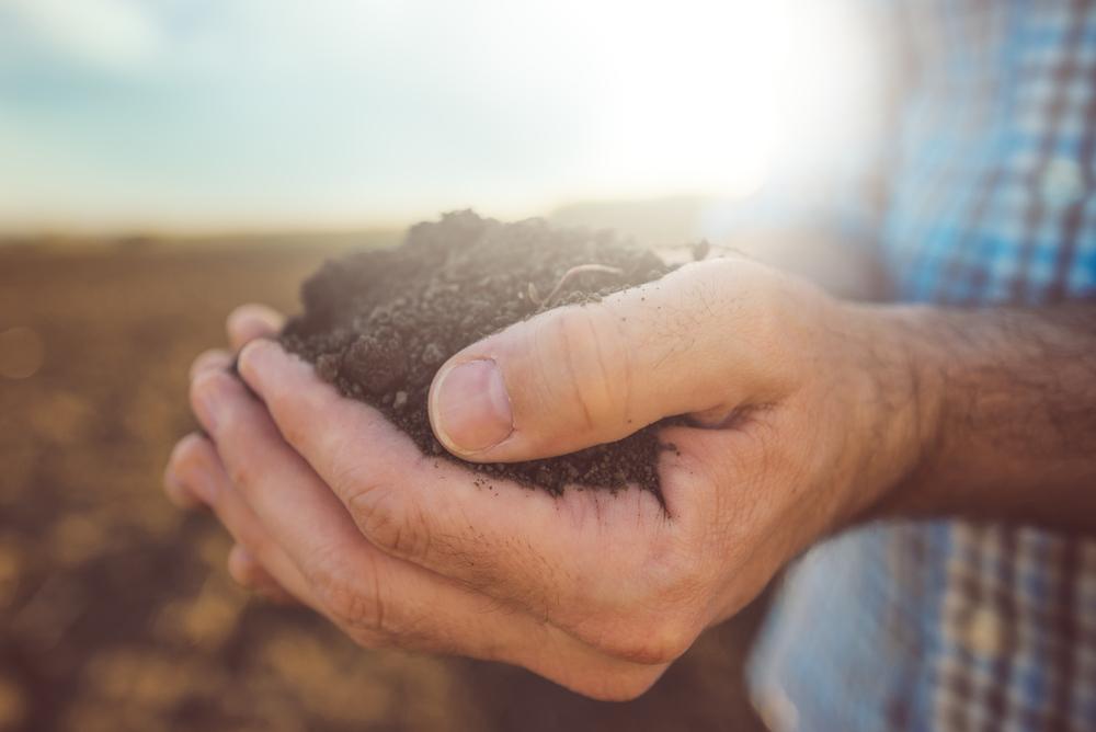 最大効率化のもと、誰でも農業可能な時代。自動野菜栽培システム「SoBiC」が示す新しい農業の姿