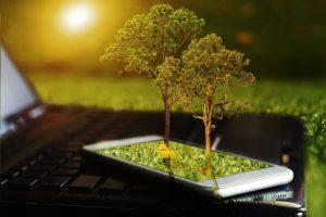 """木材にもマッチングサービスの波。林業衰退の要因、""""情報不足""""に注目する「KIBA.com」"""