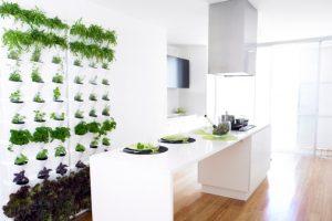 世界でムーブメント化へと向かう「インドア菜園」〜人気の立役者はミレニアル世代