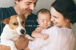 購入前ペットの健康リスクを可視化。ペット愛好家の不安を解消する「Pontely」