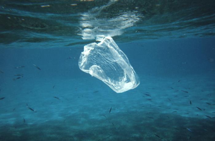 """ビジネスコンペ「サーキュラー・デザイン・チャレンジ」に見る、プラスチック汚染の""""根本治療"""""""