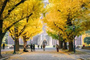 就職企業の「待遇満足度」が高い大学ランキング2位は広島大学。そのほかのランクイン大学とは