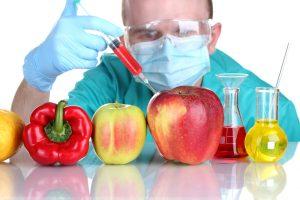 2020年の次世代植物工場の世界市場規模は165億円超に。遺伝子組換え植物が市場拡大をけん引か